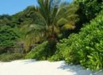 similanskie-ostrova-3