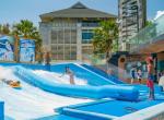 23_surf_wave